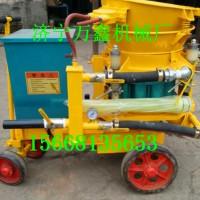 现货直销 BW60-8双缸沙浆注浆机