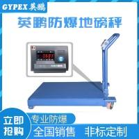 上海特气防爆地磅秤,YPEX-600/15(YD)3T